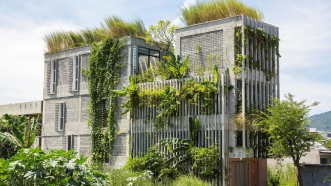 Проветрив зелен офис е покрит с местни растения, спасени от самия парцел