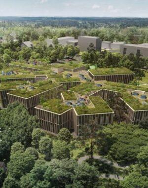Сграда на чешко горско стопанство със зелен покрив търси симбиоза с гората